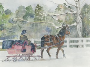 Sleigh Ralley, Stockbridge