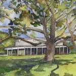 Tanglewood Shed and Tree