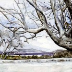 B015-Winter-View-from-Tanglewood
