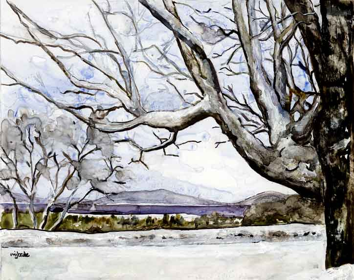 Winter-View-from-Tanglewood